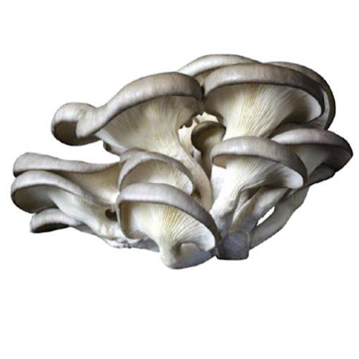 Hongos (Boletus Edulis) Troceado En Aceite De Oliva 450 grs