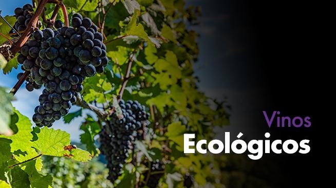 Comprar los mejores Vino ecológicos